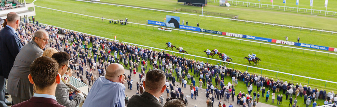 newmarket champions gallery