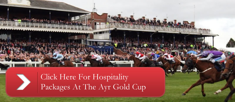 Ayr Gold Cup