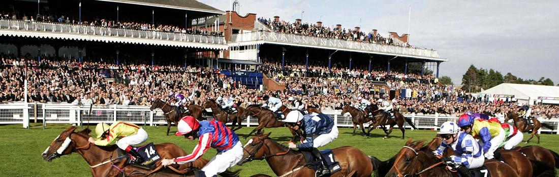 Ayr Racecourse Gold Cup Hospitality