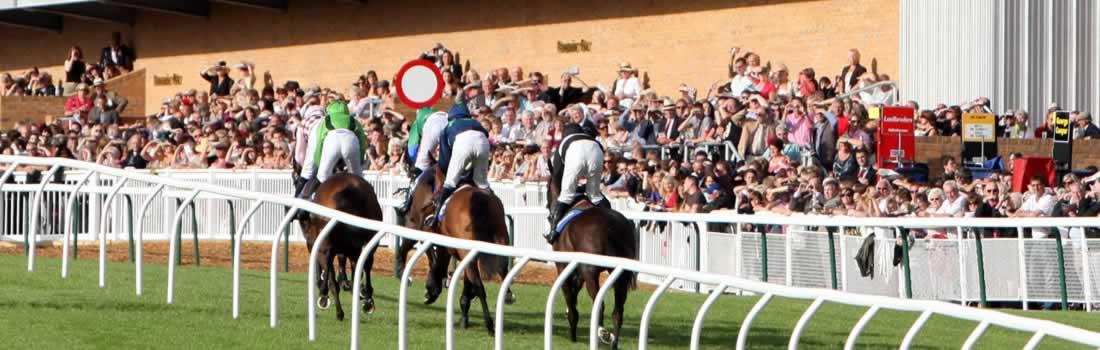 fontwell-park-racecourse-header