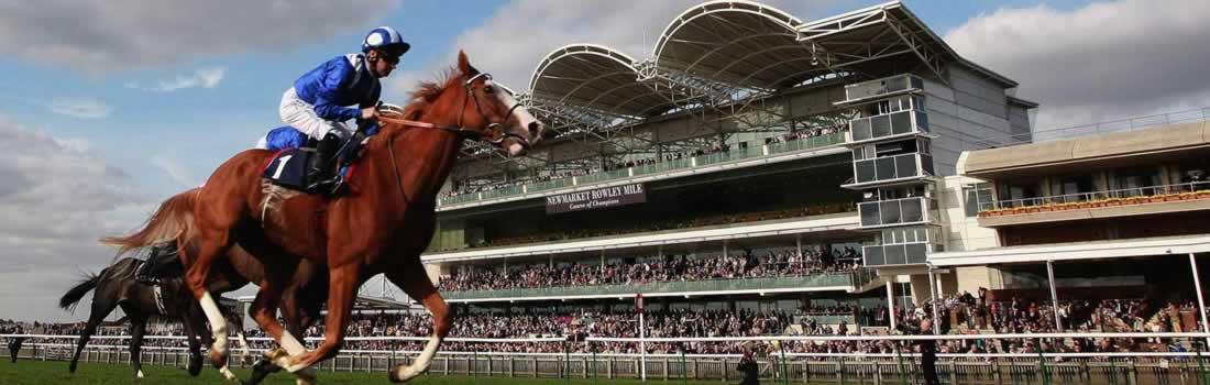 newmarket-racecourse-header