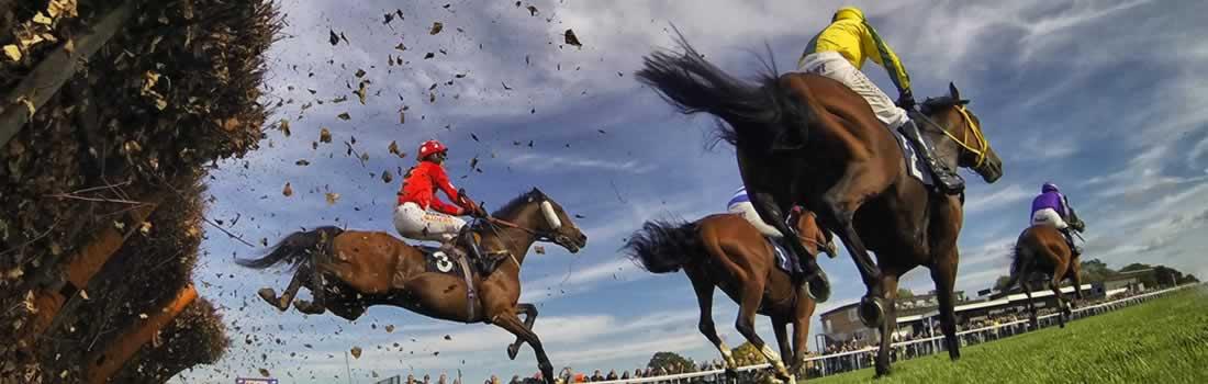 huntingdon racecourse hospitality