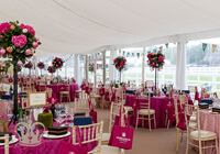 ladies day marquee