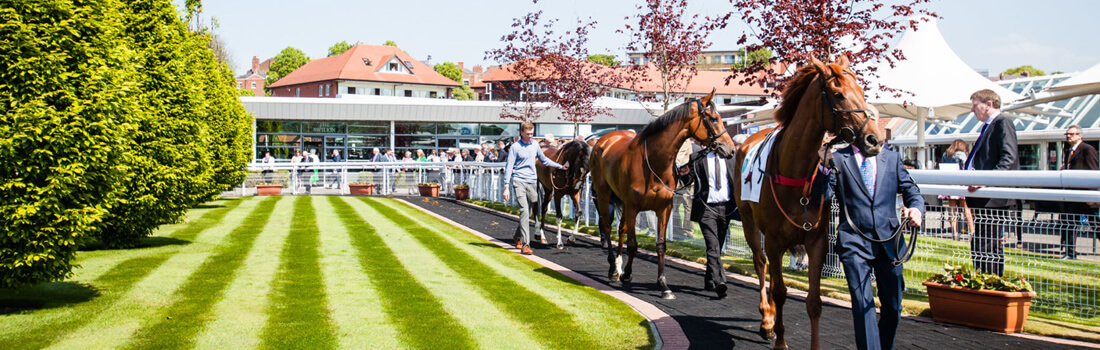 Chester Racecourse May Festival Hospitality